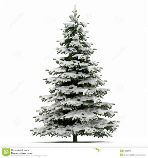 193 rbol de navidad nevado fotos de archivo imagen 31269273
