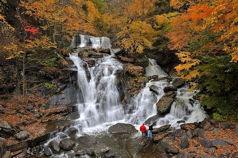 New York Falls In With The Cat by 10 Best Places To Visit In New York State With Photos