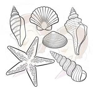 digital seashell stamps decor starfish summer beach clip