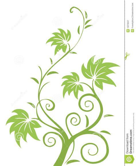leaf pattern vine green leaves and vines pattern stock illustration image