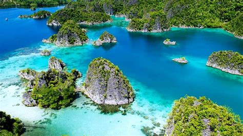Sho Clear Di Indo raja at indonesia tropical islands with green vegetation forest blue clear