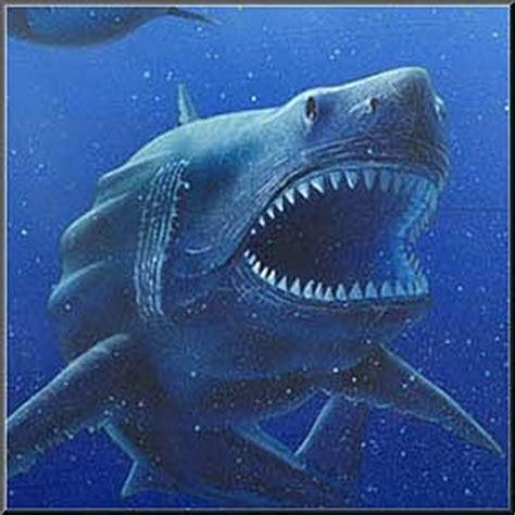 122598 Misterio De Los Anonimos Ebook by El Tiburon Megalodon Carcharodon 187 Tiburonpedia