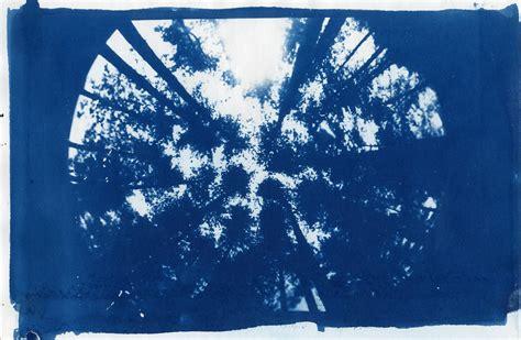cyanotype a little artistic