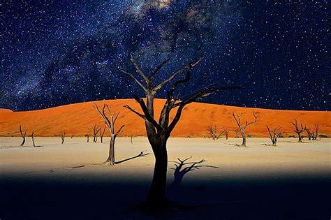 glow in the paint namibia the dead lakes of sossusvlei as world turns
