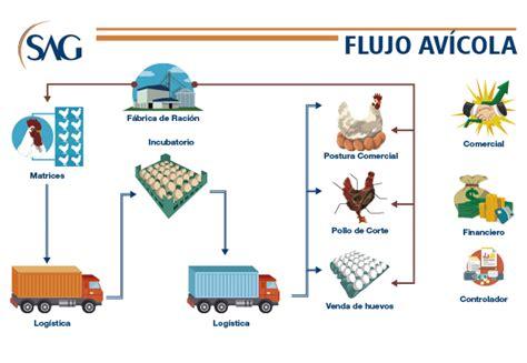 cadena productiva agroindustrial avicultura sag software agroindustrial