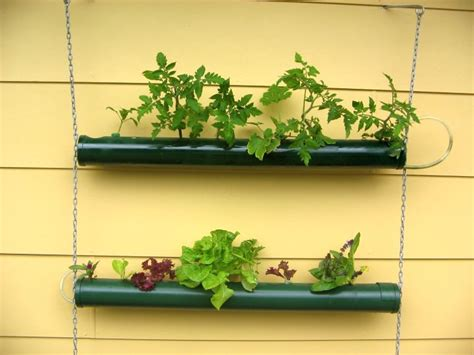 Diy Hanging Wall Planter by Easy Diy Indoor Wall Hanging Planter