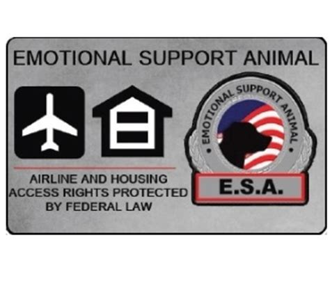 Emotional Support Animal Letter Cheap Pvc Id Badge Emotional Support Animal Identification Card