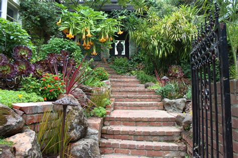 exotic and subtropical gardens archives magic gardens landscaping