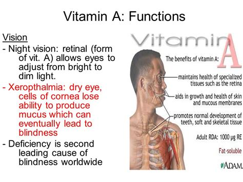 Vitamin Eye Bright vitamins minerals and water micronutrients fluid and