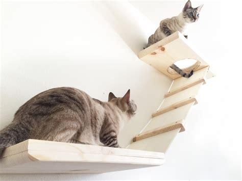 amaca per gatti percorsi per gatti con tanto di lettini e tiragraffi che