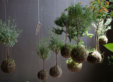 art floral japonais kokedama idees de pots de plante
