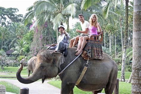bali elephant ride tour bali ubud elephant ride tour asri bali tour