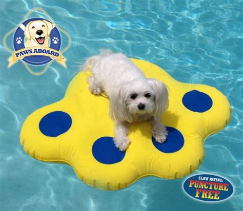 pool rafts for dogs so review paws aboard pool float lazy water raft puncture resistant