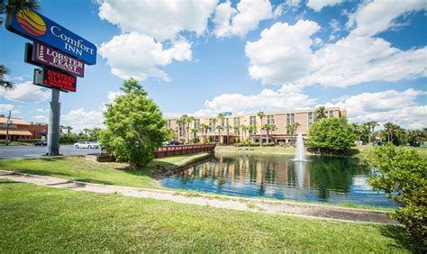 kissimmee comfort inn comfort inn maingate photo gallery