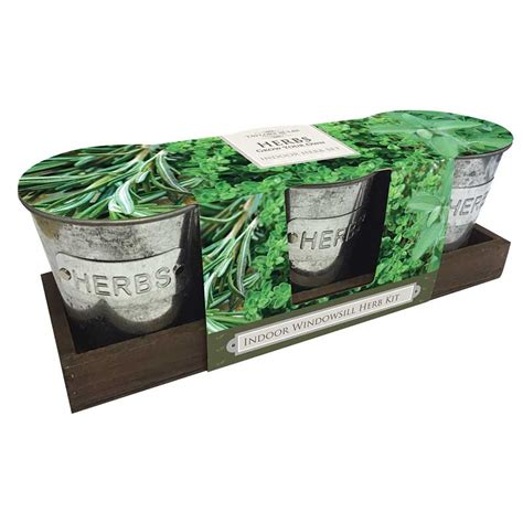 windowsill herb garden kit taylors indoor windowsill herb kit on sale fast delivery
