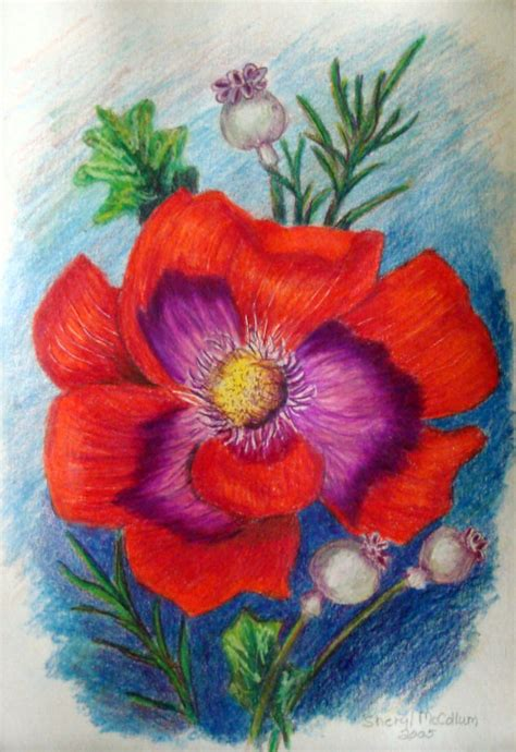 flowers in colored pencil 1600582397 red flower colored pencil drawing painting 6 x 9 inch