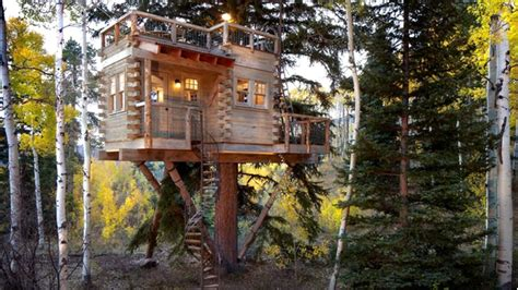look at these amazing tree houses pictures do not you see inside the amazing colorado tree house with a kitchen