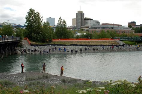ship creek panoramio photo of fishing for king salmon in ship creek