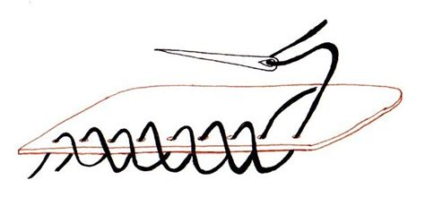 How To Make A Paper Whip - file cross whip stitch jpg wikimedia commons