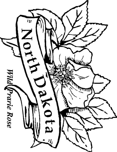 coloring pictures of state flowers 50 state flowers coloring pages for kids