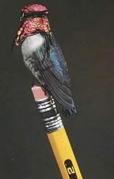 bee hummingbird actual size image