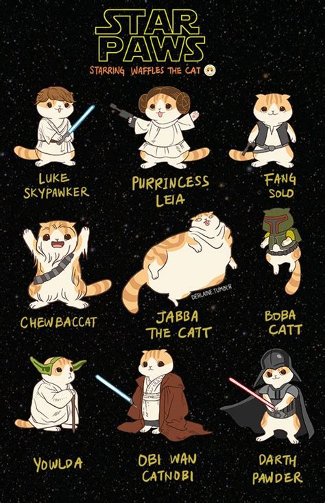 Star Wars Cat Meme - pinterest the world s catalog of ideas