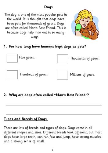 free printable reading comprehension worksheets ks1 five fiction non fiction reading comprehension booklets