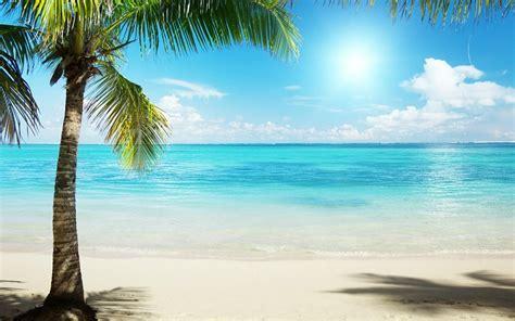 pinterest wallpaper beach tropical beach background wallpaper 1920x1200 6783