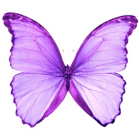 imagenes de mariposas lilas quot pensamientos para tu alma quot