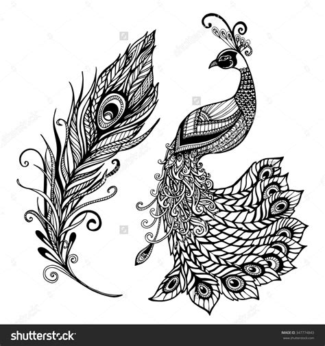 stylized tattoo designs decorative stylized peacock bird feather deco design