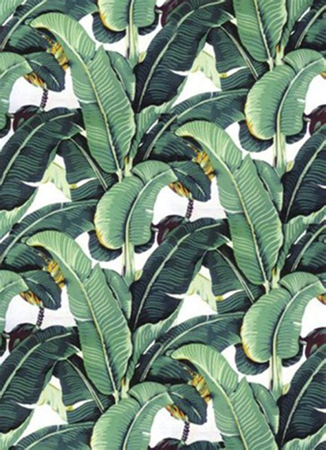 banana leaf wallpaper beverly hills hotel it s bananas liv corday