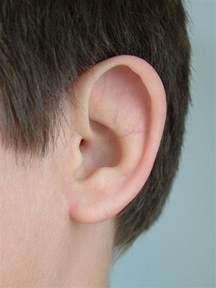 prosthetic photos ear community