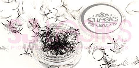 pre fanned volume lashes 0 07mm 4d pre fanned volume lashes fds04a tray