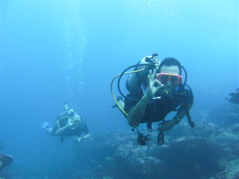 dive cook islands padi scuba dive courses adventure cook islands rarotonga