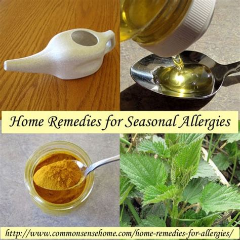 home remedies for seasonal allergies by herbalism home
