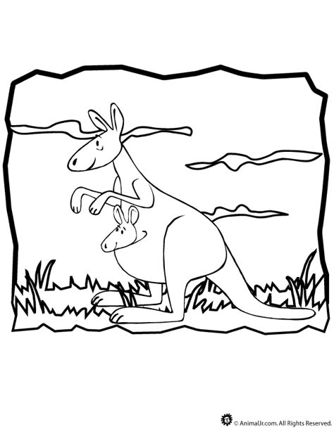 cartoon kangaroo coloring pages baby kangaroo coloring pages az coloring pages