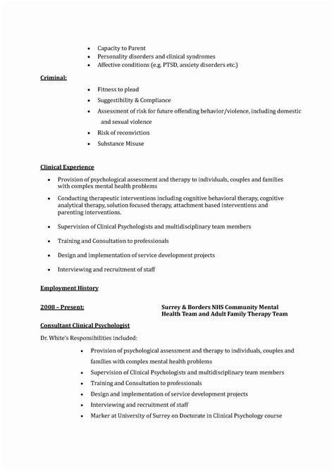 expert resume sles expert witness resume beautiful professional resume