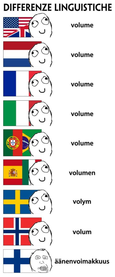 Finnish Language Meme - language difference