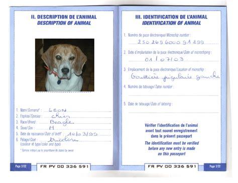 alitalia cani in cabina costo biglietto aereo taglia piccola lufthansa