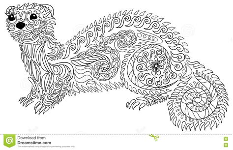 Hand Drawn Ferret With High Details. Stock Vector   Image
