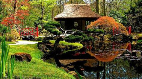 Backyard Japanese Garden by Backyard Japanese Garden Design Ideas