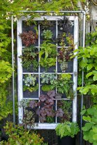 Old Windows In Garden Love This Idea Vertical Garden Out Of An Old Window