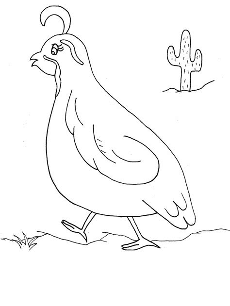 free coloring pages of quail and manna