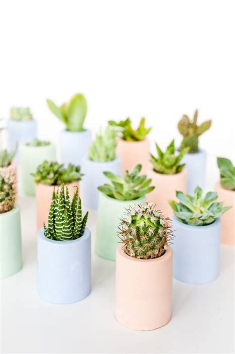 29 diy succulent planter ideas creative ways to display