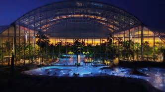 Tropical Plants For Pool Area - therme bucharest romania the largest thermal wellness center in europe