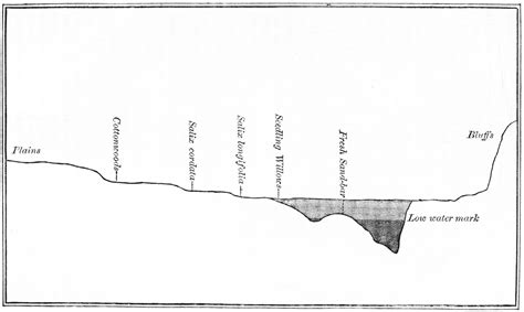 Cross Section Of A River by Cross Section Diagram Base Level Diagram