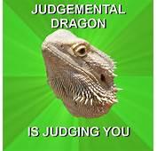 Bearded Dragon Meme By Easter Hare On DeviantArt