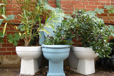 Plants And Planters by Triceratops To Toilets 7 Awesomely Diy