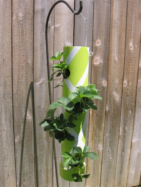 pvc strawberry planter pvc planter green thumb