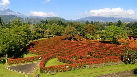 taman bunga tercantik  dunia  bakal bikin  doi